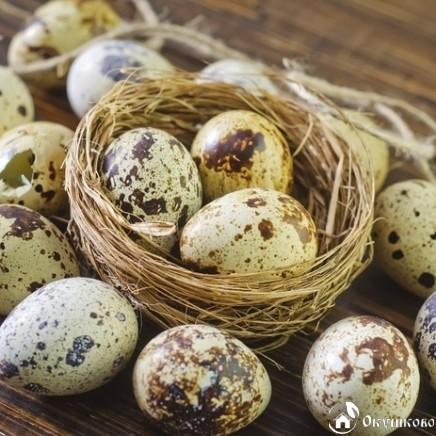 Домашнее перепелиное яйцо (пищевое)
