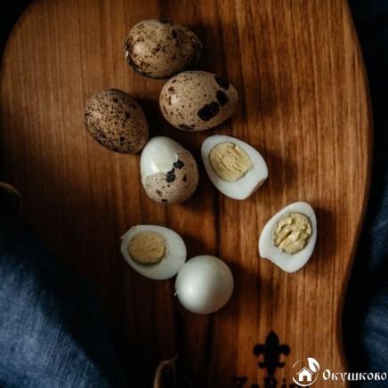 Домашнее перепелиное яйцо (пищевое) купить