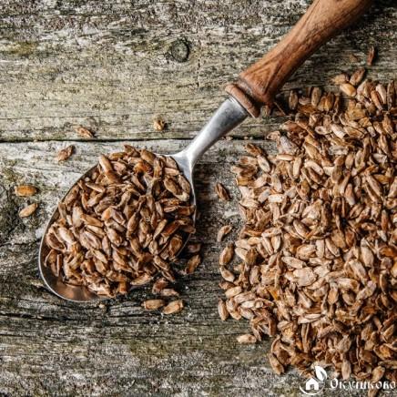 Жмых семян расторопши купить